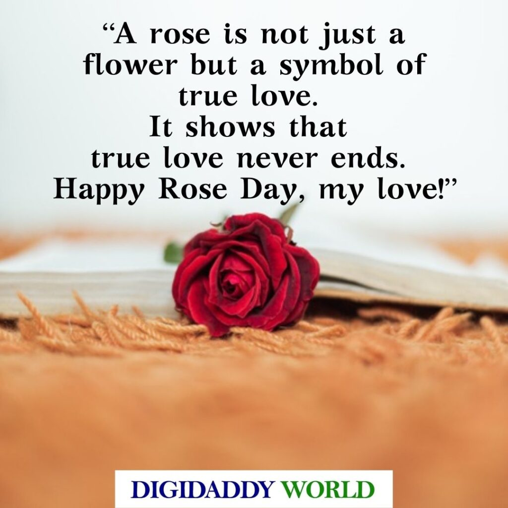 Happy Rose Day Unique Quotes and Special Lines For Lovers