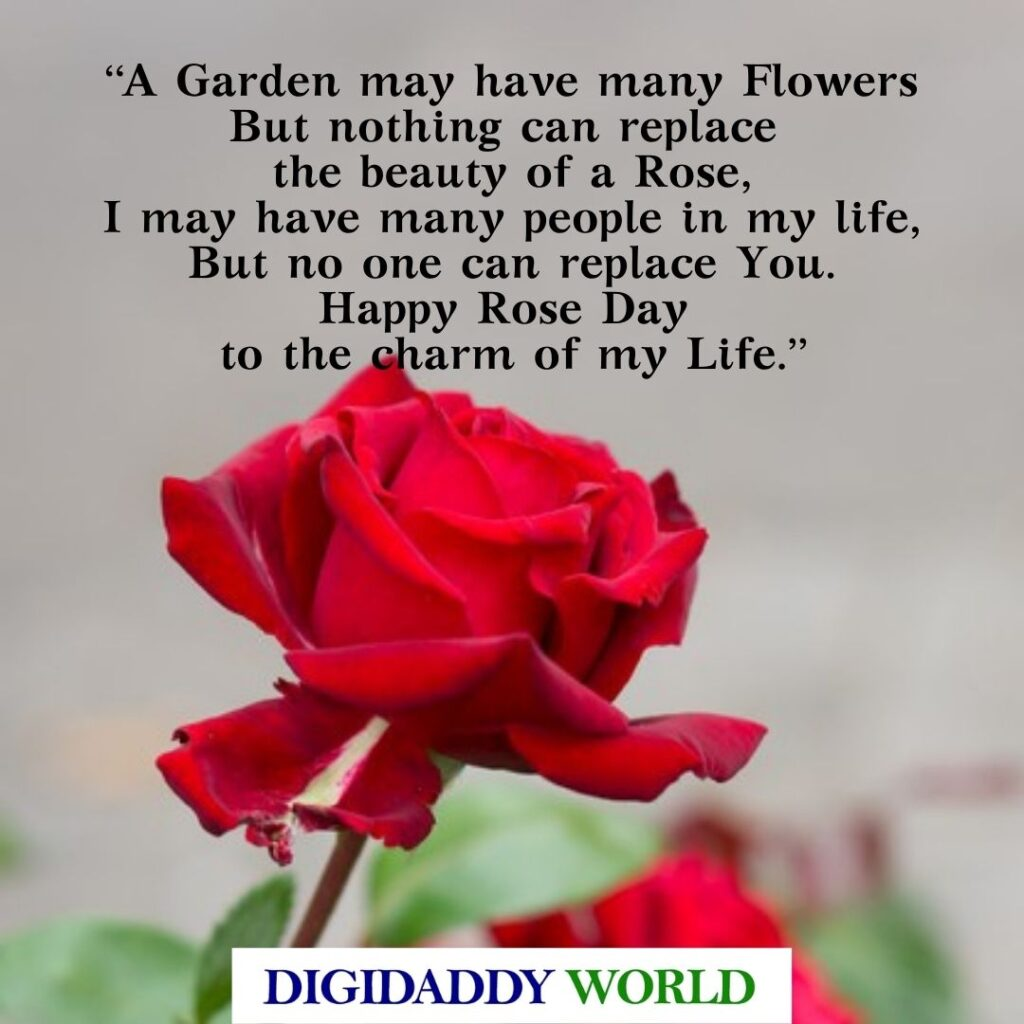 Happy Rose Day Quotes, Messages, Wishes