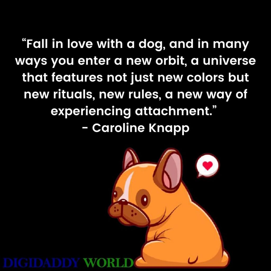 Inspirational Dog Quotes images