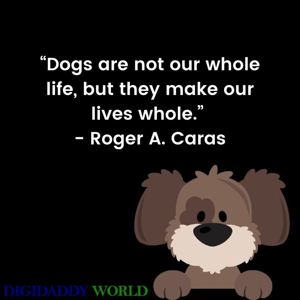 Dog Quotes About Man's Best Friend
