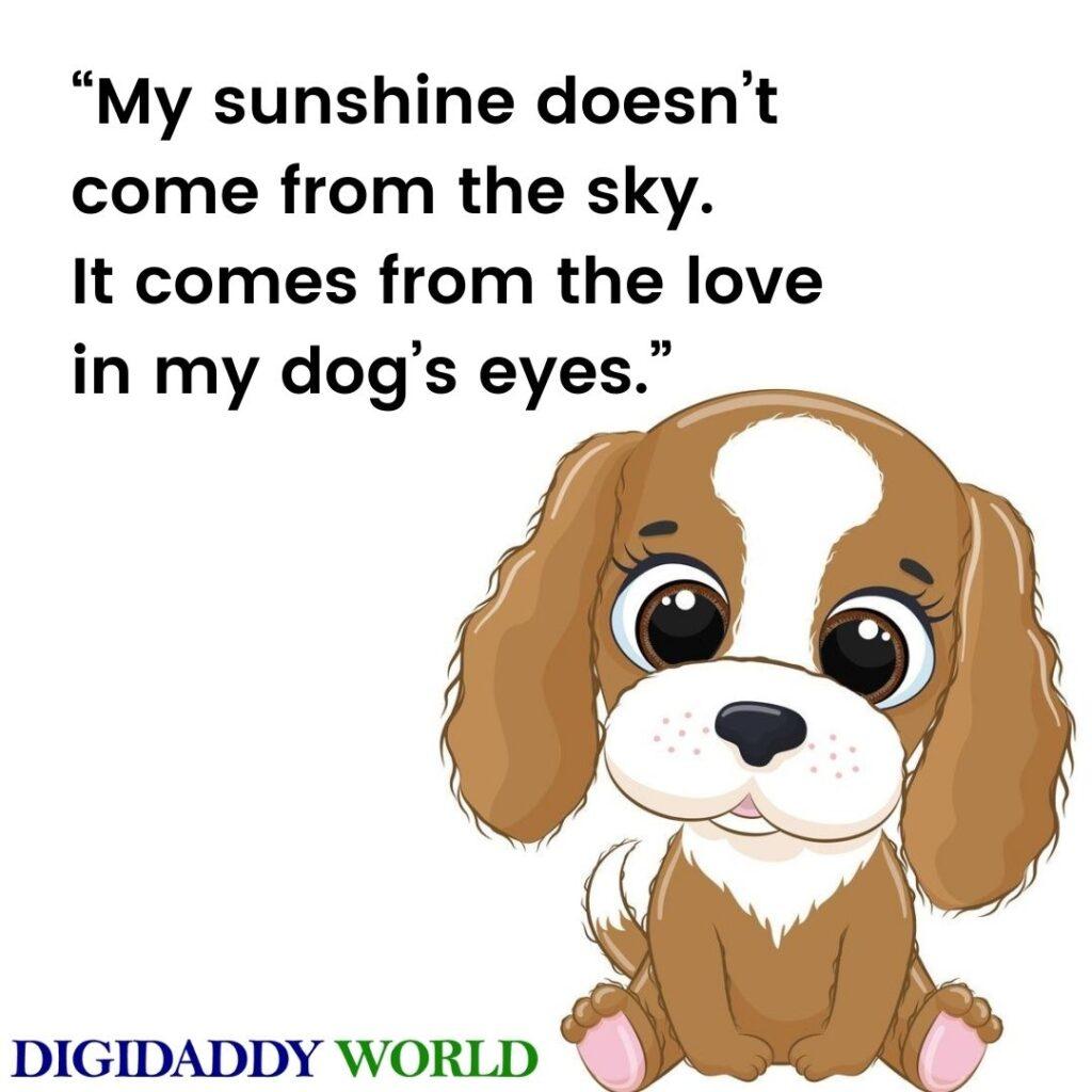 Dog Quotes Best Friend images