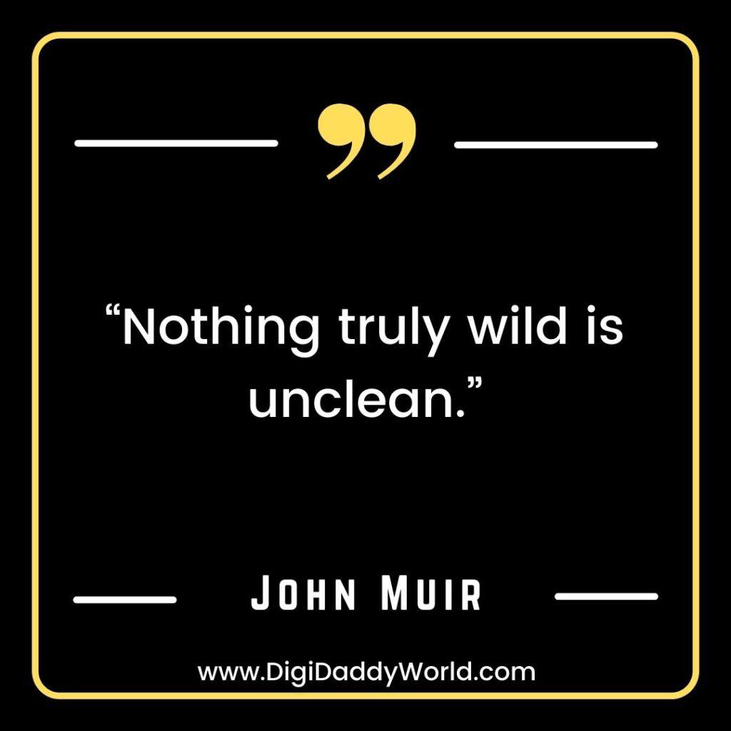 John Muir Quotes On Mountains